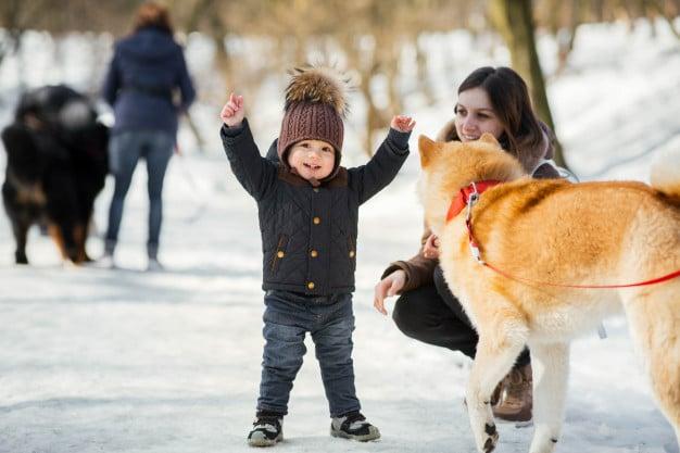 Akita e crianças