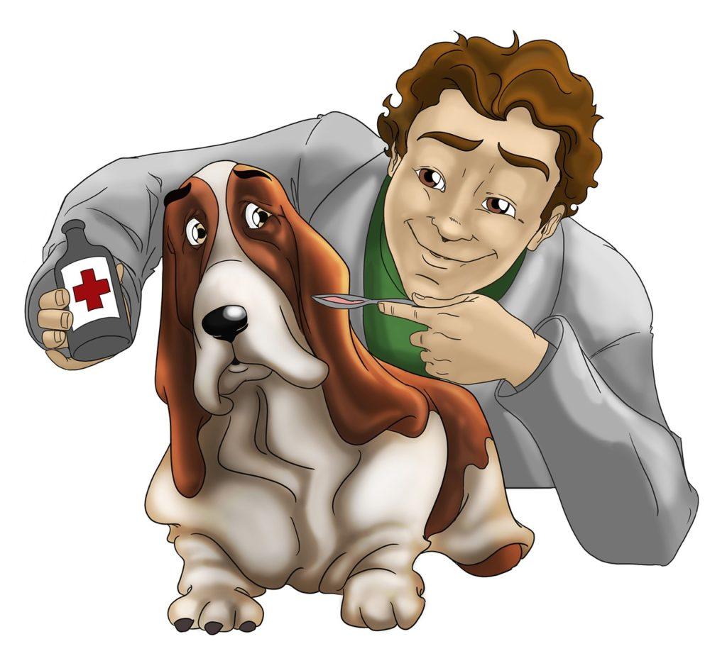 remédio para cachorro mancando