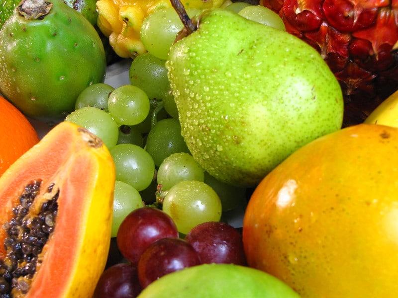 Frutas para cachorro comer