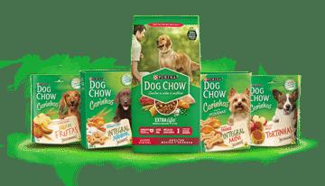 A ração Dog Chow é boa
