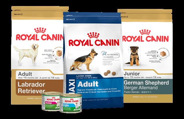 Ração Royal Canin é Boa